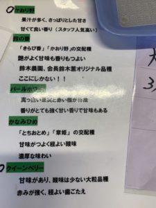 掛川いちご狩り【鈴木農園】