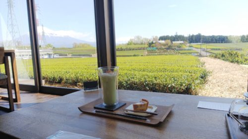 富士市 佐野製茶 ダヤンテールblog