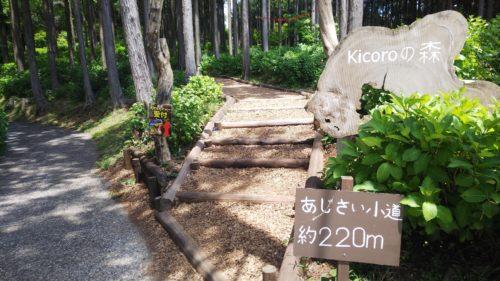 三島スカイウォーク ダヤンテールblog