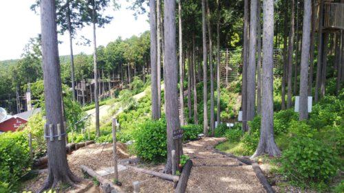 三島スカイウォークダヤンテールblog
