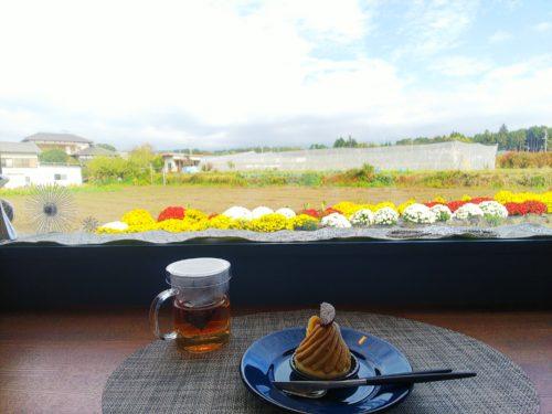 富士宮市 モンサンフジ ダヤンテールblog